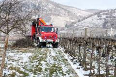 Sattelzug rutscht bei der Zufahrt zu einem Weingut von der Straße
